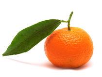 cadeaux- mandarine